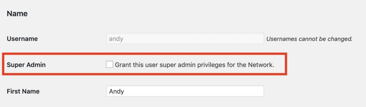 Grant Super Admin option in the WordPress Network Admin